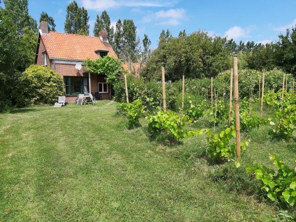 Foto 1: Vakantiehuis Olieslagersweg 3 Retranchement Zeeland