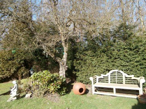 Foto 2: Vakantiehuis hoogenboomlaan 7a-9 Renesse Zeeland