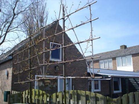 Foto 1: Vakantiehuis Wielingenstraat 17 Zoutelande Zeeland