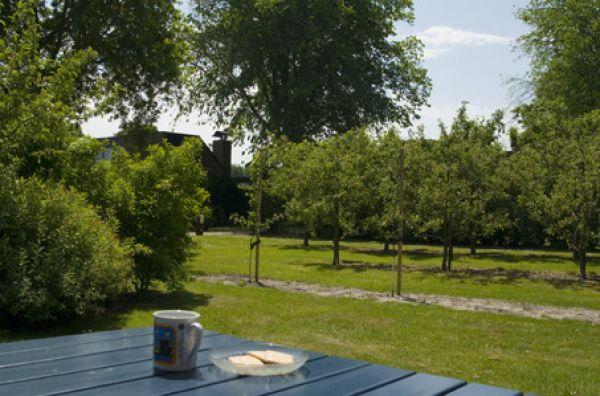 Foto 2: Vakantiehuis De Haaymanweg 5 Burgh-Haamstede Zeeland